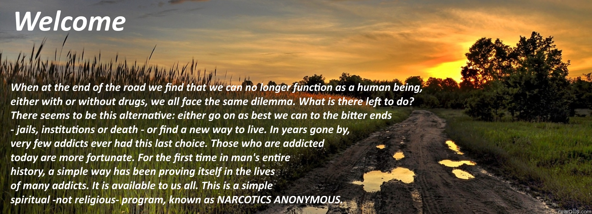 Forest Area of Narcotics Anonymous